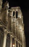 France. Paris. Notre Dame na noite. Imagens de Stock Royalty Free