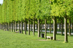 France, the picturesque city of Saint Germain en Laye Royalty Free Stock Photography