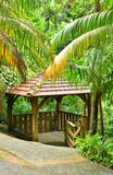 France, the picturesque garden of Balata in Martinique Royalty Free Stock Photo