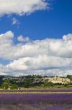 France - Provence - Sault Stock Photography