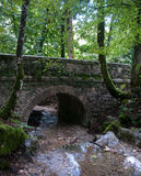 France Savoie forest walks Royalty Free Stock Photography