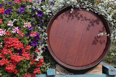 France vineyard wood wine barrel with flower display at grape harvest time Stock Image