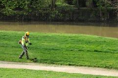 Frances, un jardinier avec un strimmer en parc Images stock