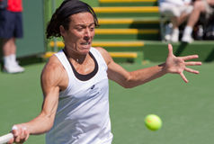 Francesca Schiavone at the 2010 BNP Paribas Open Royalty Free Stock Images