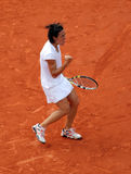 Francesca SCHIAVONE (ITA) at Roland Garros 2010 Stock Images