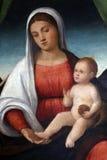 Francesco Bissolo: Madonna Z dzieckiem obraz stock