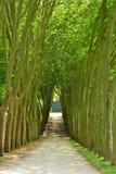 Francia, el parque clásico de Marly le Roi imagenes de archivo