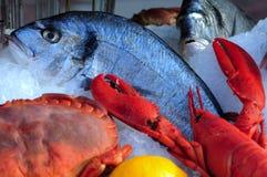 Francia, Niza: Pescados de riviera francesa Foto de archivo libre de regalías