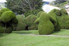 The Francisco Alvardo Park in Zarcero, Costa Rica Royalty Free Stock Photos