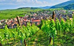 Francja, malownicza wioska Riquewihr w Alsace Fotografia Royalty Free
