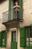 Francja prostackie lale, CAMPAN, FRANCJA Fotografia Stock