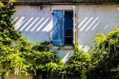 Francja, Provence Typowy stary dom, otwarte okno z błękit żaluzjami otaczał zielone rośliny zdjęcia stock