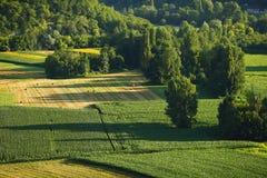Francja zieleni pola panorama Obrazy Stock