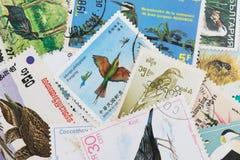Francobolli con un tema dell'uccello Fotografie Stock