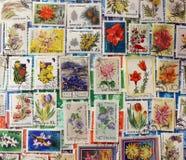 Francobolli dei fiori Fotografia Stock