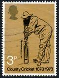 Francobollo BRITANNICO del cricket della contea Immagini Stock