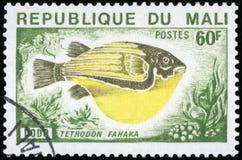 Francobollo del Mali Fotografia Stock Libera da Diritti