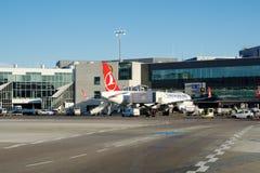 FRANCOFORTE, ALEMANHA - 20 de janeiro de 2017: Aviões, um Airbus de Turkish Airlines, na porta no terminal 1 em Francoforte Fotos de Stock Royalty Free