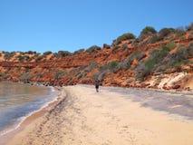 Francois Peron National Park, Haifisch-Bucht, West-Australien lizenzfreies stockbild