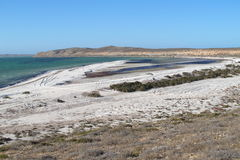 Francois Peron National Park, Shark Bay, Western Australia Royalty Free Stock Image