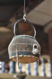 Francolin Bird Birdcage Wood Hang Thailand Stock Image