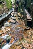Franconia-Kerben-Nationalpark, New Hampshire, USA lizenzfreie stockbilder
