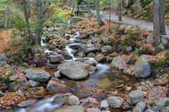 Franconia notch state park, new hampshire, usa. Water stream and falls in franconia notch state park, new hampshire, usa Royalty Free Stock Photo