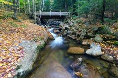 Franconia notch state park, new hampshire, usa Royalty Free Stock Image