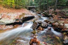 Franconia notch state park, new hampshire, usa. Water stream and falls in franconia notch state park, new hampshire, usa royalty free stock photography