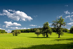 Franconian country side. Country side at spring near Erlangen in Germany Royalty Free Stock Images