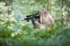 Francotirador en bosque Imagen de archivo