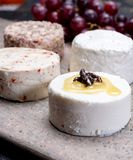 Francuscy miękcy sery, rozmaitość różny smak kózki mleka natura zdjęcia stock