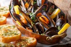 Francuscy mussels z cytryny, pietruszki i czosnku zakończeniem w copp, obraz royalty free