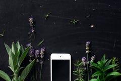 Francuscy ziele i telefon na czarnym biurku fotografia royalty free