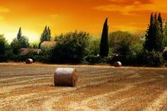 francuska pola słoma zdjęcie royalty free