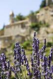 Francuska Wioska, lawendowi kwiaty. Provence. Obraz Royalty Free