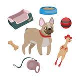 Francuski buldog i zabawki royalty ilustracja