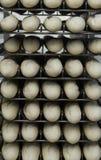 francuski chleb niegotowane Zdjęcie Stock