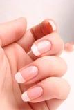 francuski manicure Zdjęcie Stock