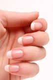 francuski manicure Obraz Stock
