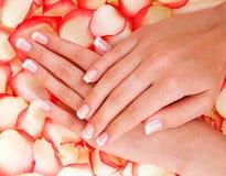 Francuski manicure i czerwień wzrastaliśmy zdjęcie stock