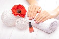 Francuski manicure z czerwonym makowym kwiatem Zdjęcia Stock