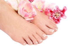francuski pedicure Obrazy Royalty Free