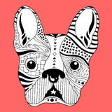 Francuskiego buldoga cukrowa czaszka, frenchie śliczny psi nieboszczyk dzień, wektorowa ilustracja Fotografia Royalty Free