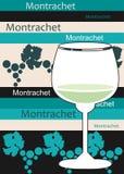 francuskiego montrachet biały wino royalty ilustracja