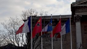Francuz i chińczyk zaznaczamy w wiatrze przed zgromadzeniem narodowym zdjęcie wideo