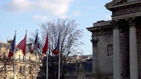 Francuz i chi?czyk zaznaczamy w wiatrze przed zgromadzeniem narodowym zbiory wideo
