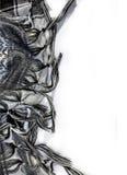 Frangia nera della sciarpa del plaid Fotografia Stock Libera da Diritti
