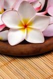Frangipane flower on the rattan background. Frangipane flowers on a wooden dish on the rattan background Stock Photo