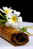 Frangipane flowers and rattan Stock Images